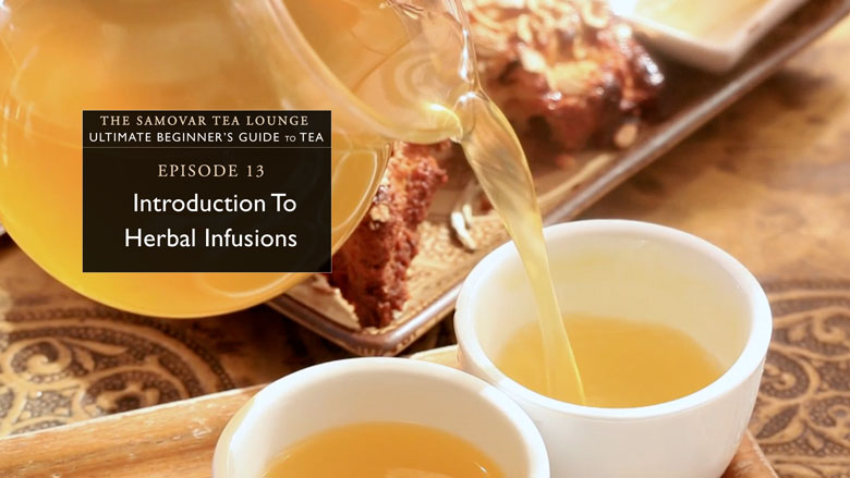 13. Introduction To Herbal Infusions