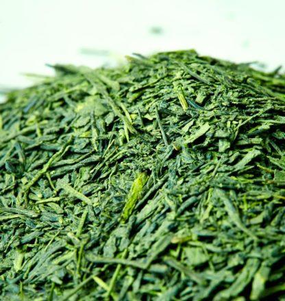 Organic Green Ecstasy Matcha and Sencha Green Tea Blend