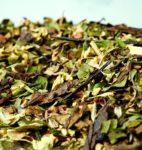 Organic Moorish Mint Green Tea Blend