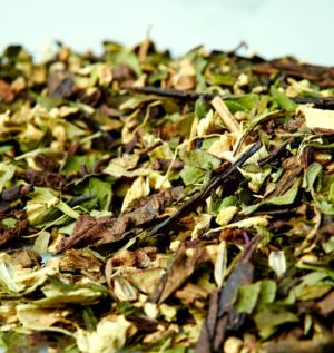 Organic Moorish Mint Green Tea Blend